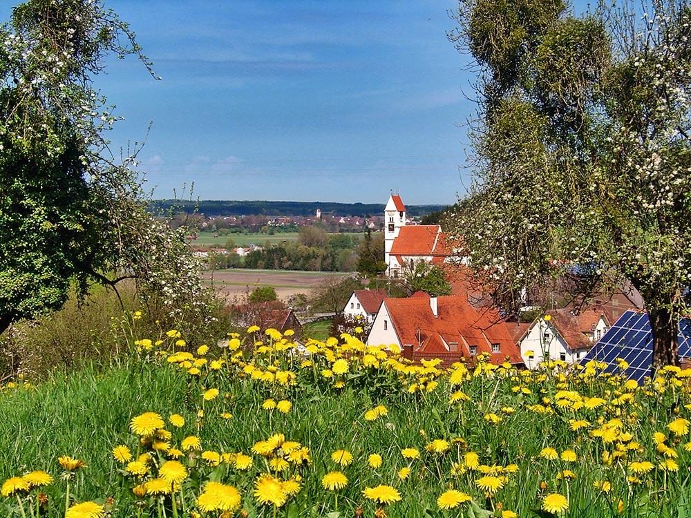Frickenhausen Oberhalde